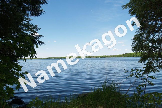 Views of Lake Namekagon